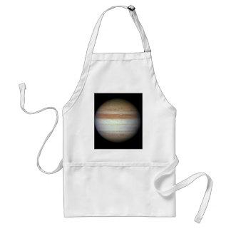 Jupiter June 7, 2010 Atmospheric Changes Adult Apron
