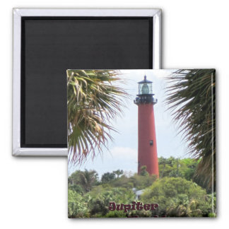 Jupiter Lighthouse through the Palms Magnet