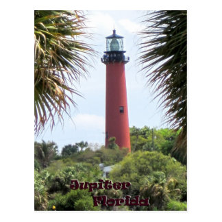 Jupiter Lighthouse through the Palms Postcard