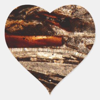 Jurassic shells under the microscope heart sticker