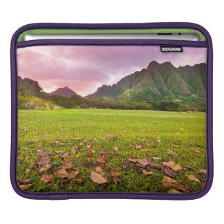 Jurassic Sunset iPad Sleeves