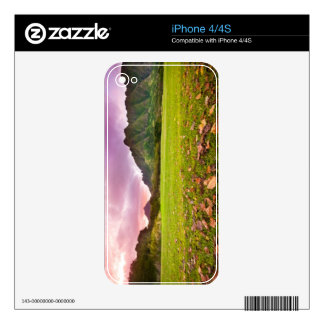 Jurassic Sunset Skin For The iPhone 4