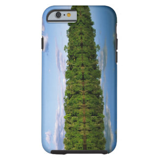Juruena, Brazil. Forested river bank reflected Tough iPhone 6 Case
