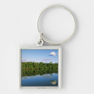 Juruena, Brazil. Forested river bank reflected Keychain