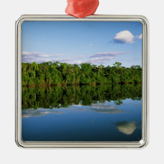 Juruena, Brazil. Forested river bank reflected Metal Ornament