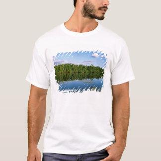 Juruena, Brazil. Forested river bank reflected T-Shirt