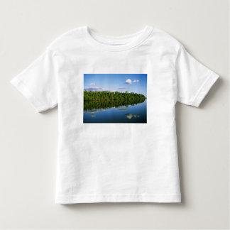 Juruena, Brazil. Forested river bank reflected Toddler T-shirt