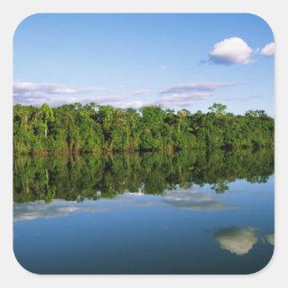 Juruena, el Brasil. Orilla del río boscosa Calcomanías Cuadradass Personalizadas