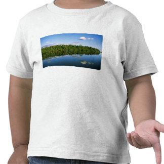 Juruena, el Brasil. Orilla del río boscosa Camiseta