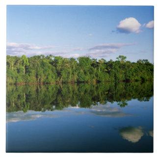 Juruena, el Brasil. Orilla del río boscosa refleja Azulejos Ceramicos