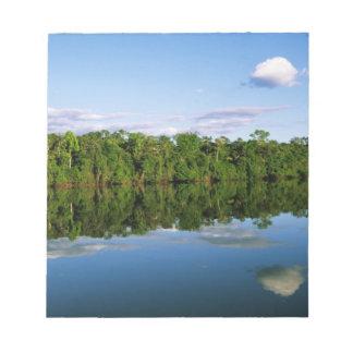 Juruena, el Brasil. Orilla del río boscosa refleja Bloc De Papel