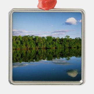 Juruena, el Brasil. Orilla del río boscosa refleja Adorno