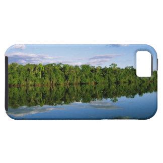 Juruena, el Brasil. Orilla del río boscosa refleja iPhone 5 Carcasas