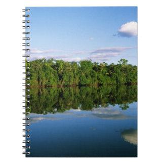Juruena, el Brasil. Orilla del río boscosa refleja Libretas