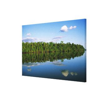 Juruena, el Brasil. Orilla del río boscosa refleja Lona Envuelta Para Galerias