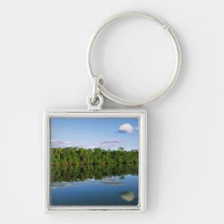 Juruena, el Brasil. Orilla del río boscosa refleja Llavero Personalizado