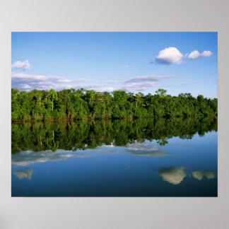 Juruena, el Brasil. Orilla del río boscosa refleja Impresiones