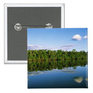 Juruena, el Brasil. Orilla del río boscosa refleja Pin