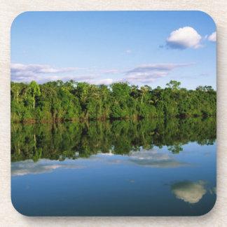 Juruena, el Brasil. Orilla del río boscosa refleja Posavasos De Bebidas