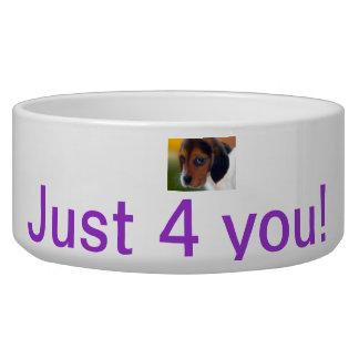 Just 4 You Pet Bowl