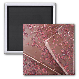 just a bit of chocolate 2 inch square magnet