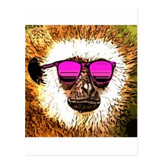 just a cool Monkey Postcard