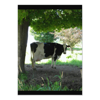 Just a Cow chillin under trees with grass Personalized Invitations