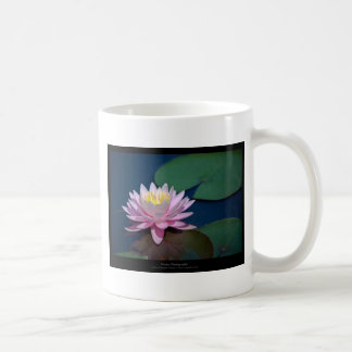Just a flower – Pink waterlily flower 008 Mug