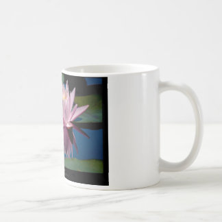 Just a flower – Pink waterlily flower 009 Mugs