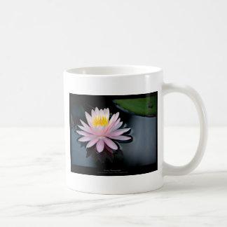 Just a flower – Pink waterlily flower 037 Coffee Mug