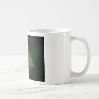 Just a flower – Pink & White flower Caliandra 011 Coffee Mug
