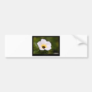 Just a flower – White flower 019 Bumper Sticker