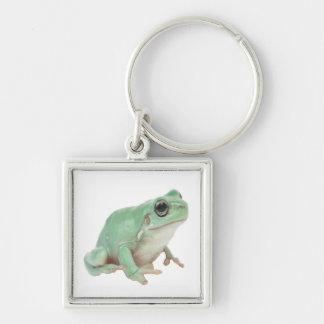 Just a green frog Silver-Colored square keychain