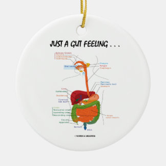 Just A Gut Feeling . . .  (Digestive System) Double-Sided Ceramic Round Christmas Ornament