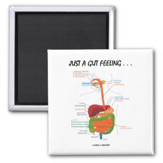 Just A Gut Feeling... (Digestive System Humor) 2 Inch Square Magnet