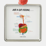 Just A Gut Feeling . . .  (Digestive System) Christmas Tree Ornaments