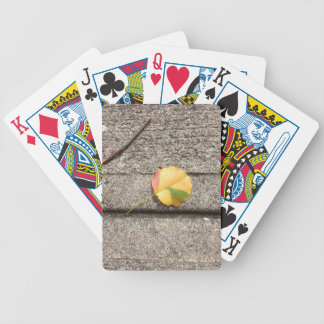 Just a leaf bicycle playing cards