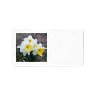 Just a Little Daffodil... Label