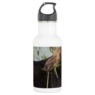 Just a Munching Stainless Steel Water Bottle