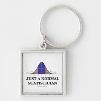 Just A Normal Statistician (Bell Curve Humor) Keychains