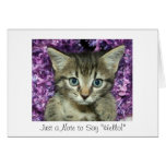 "Just a Note to Say ""Hello!"" Gray Kitten Stationery Note Card"