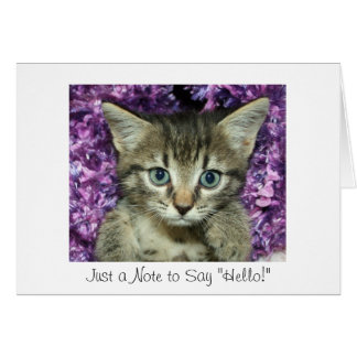 """Just a Note to Say """"Hello!"""" Gray Kitten Card"""