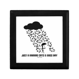 Just A Raining Cats And Dogs Day Jewelry Box