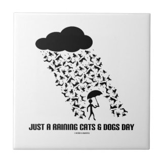 Just A Raining Cats And Dogs Day Small Square Tile