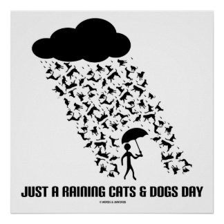 Just A Raining Cats & Dogs Day Poster