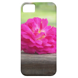 Just a rose iPhone 5 covers