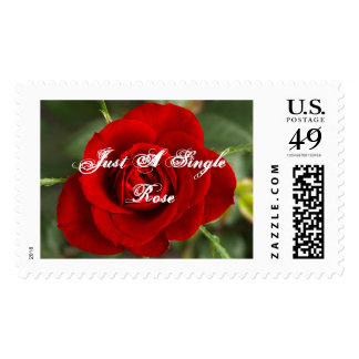 Just A Single Rose Postage Stamp