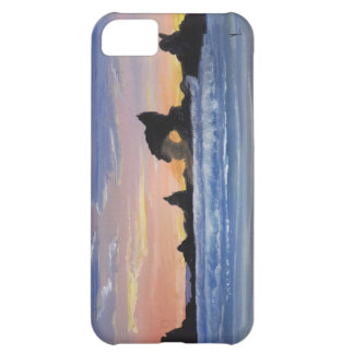 Just a thought iPhone 5C case