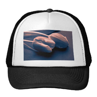 Just A touch Trucker Hat