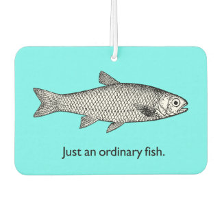 Just an ordinary fish air freshener